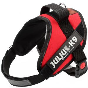 julius-k9-tuig